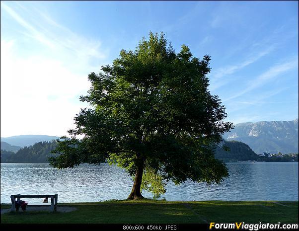 Slovenia, polmone verde d'Europa-322-p1800549.jpg