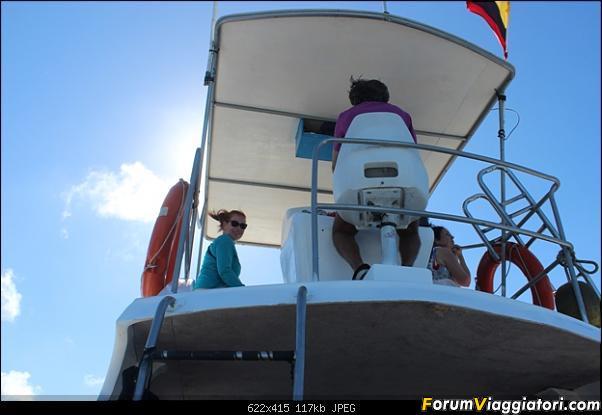[ECUADOR - Galapagos - Escursione] Leon Dormido (Kicker Rock) daily tour-4.jpg