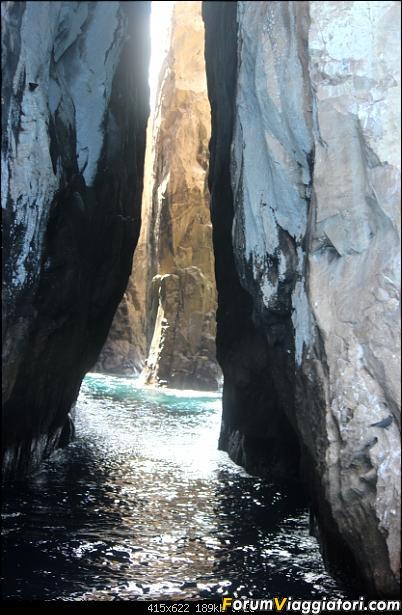 [ECUADOR - Galapagos - Escursione] Leon Dormido (Kicker Rock) daily tour-7.jpg
