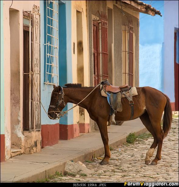 Informazioni e foto, un po' e un po' di ritorno da Cuba!-_dsc1374.jpg