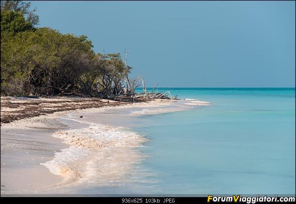 Informazioni e foto, un po' e un po' di ritorno da Cuba!-_dsc1663.jpg