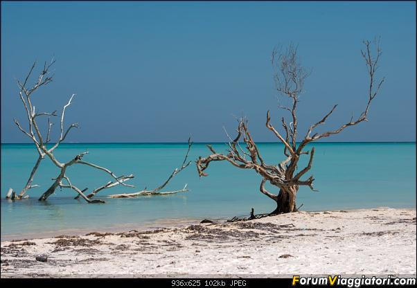 Informazioni e foto, un po' e un po' di ritorno da Cuba!-_dsc1674.jpg