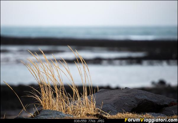 Doppia Islanda on ice...due viaggi in inverno-dsc_1070.jpg