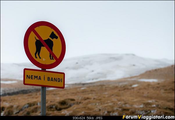 Doppia Islanda on ice...due viaggi in inverno-dsc_0945.jpg