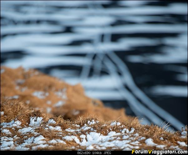 Doppia Islanda on ice...due viaggi in inverno-dsc_0957.jpg
