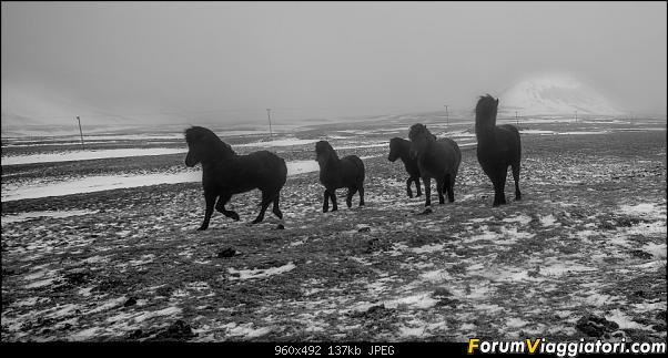 Doppia Islanda on ice...due viaggi in inverno-_d750527-2.jpg