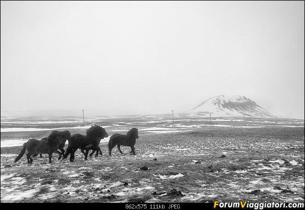 Doppia Islanda on ice...due viaggi in inverno-_d750519_a.jpg