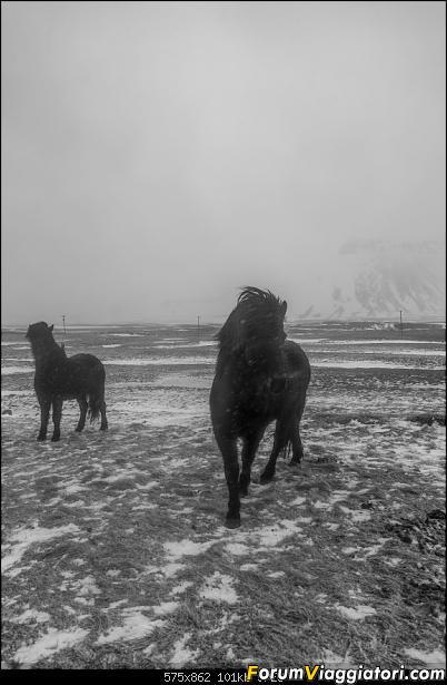 Doppia Islanda on ice...due viaggi in inverno-_d750529-2.jpg