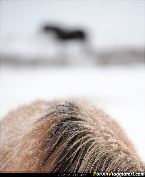Doppia Islanda on ice...due viaggi in inverno-dsc_7915.jpg