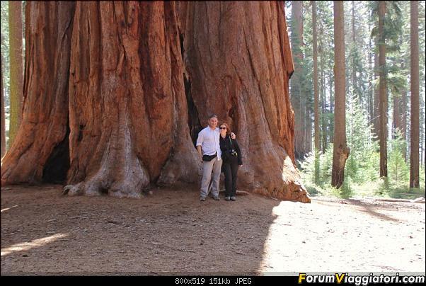 California, Land of Glittering Dreams (2018)-54img_1006.jpg