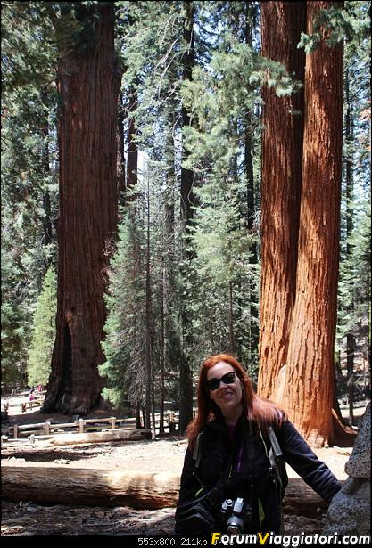 California, Land of Glittering Dreams (2018)-58img_1020.jpg