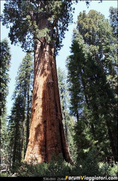 California, Land of Glittering Dreams (2018)-60img_0057.jpg