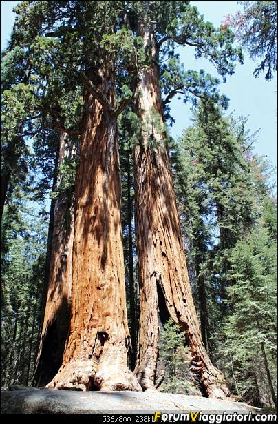 California, Land of Glittering Dreams (2018)-71img_0065.jpg
