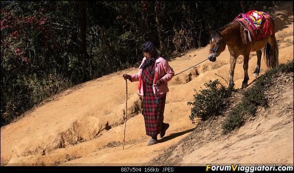L'ultimo regno buddista: primi appunti e foto di un viaggio in Bhutan-dsc_0258.jpg