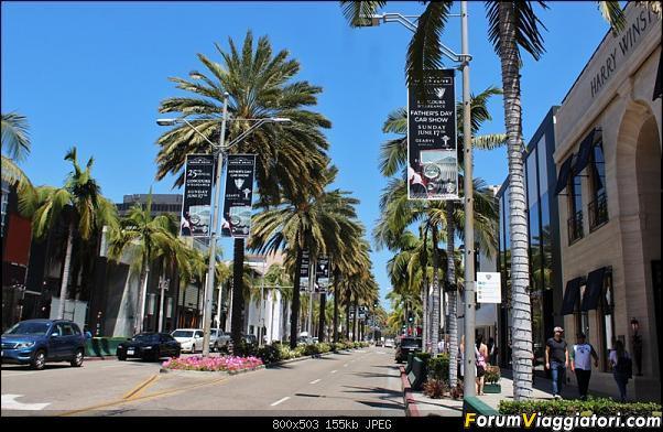 California, Land of Glittering Dreams (2018)-35img_4608.jpg