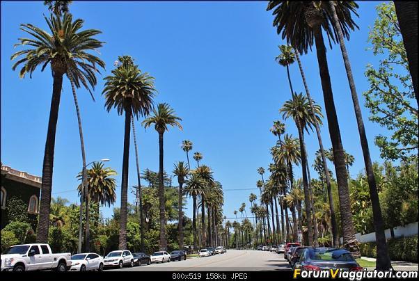 California, Land of Glittering Dreams (2018)-40img_2468.jpg