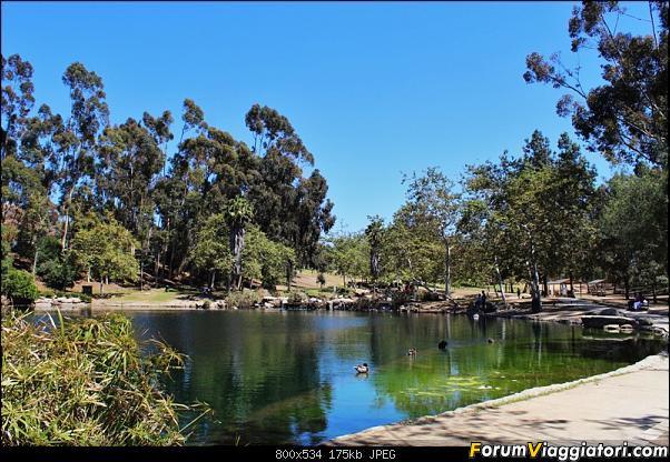 California, Land of Glittering Dreams (2018)-93img_2556.jpg