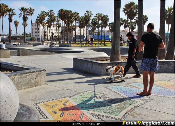 California, Land of Glittering Dreams (2018)-11img2602.jpg