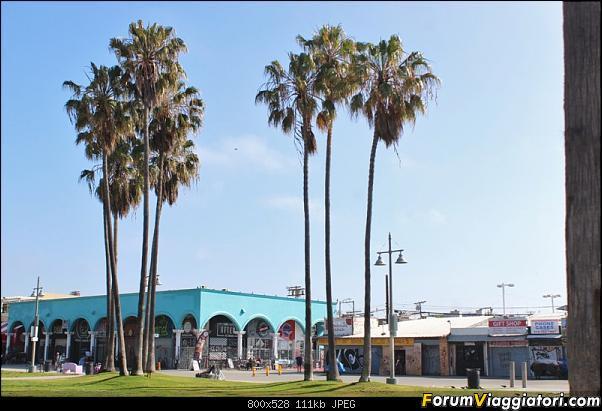 California, Land of Glittering Dreams (2018)-15img4823.jpg