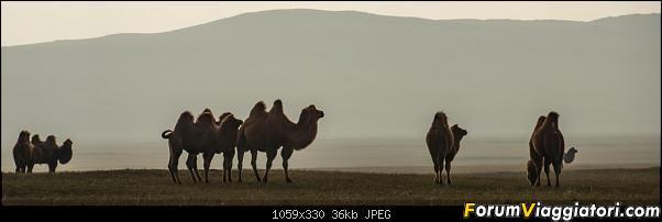 Nomadi e steppe, aquile e montagne: un viaggio in Mongolia-_dsc2515.jpg