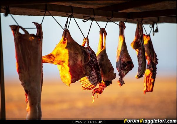Nomadi e steppe, aquile e montagne: un viaggio in Mongolia-_dsc2657.jpg