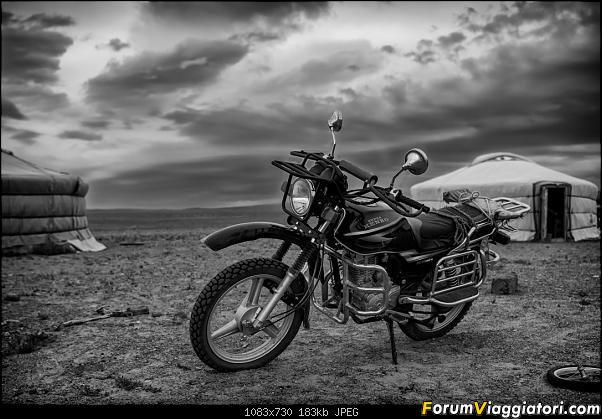 Nomadi e steppe, aquile e montagne: un viaggio in Mongolia-dsc_4074_bn.jpg