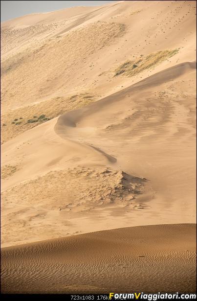 Nomadi e steppe, aquile e montagne: un viaggio in Mongolia-_dsc2874.jpg