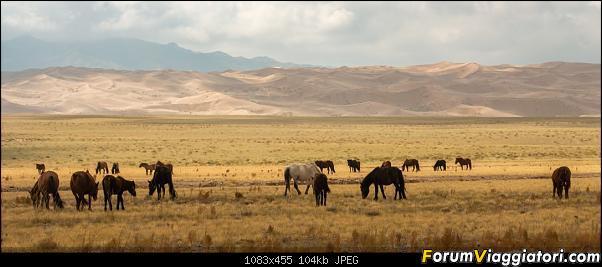 Nomadi e steppe, aquile e montagne: un viaggio in Mongolia-_dsc2922.jpg