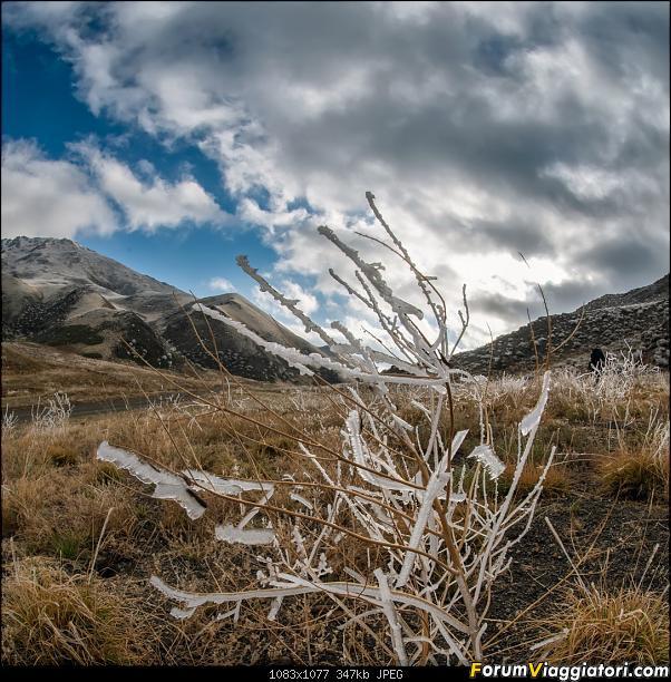 Nomadi e steppe, aquile e montagne: un viaggio in Mongolia-dsc_4141.jpg