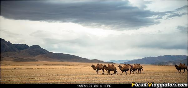 Nomadi e steppe, aquile e montagne: un viaggio in Mongolia-dsc_4286.jpg