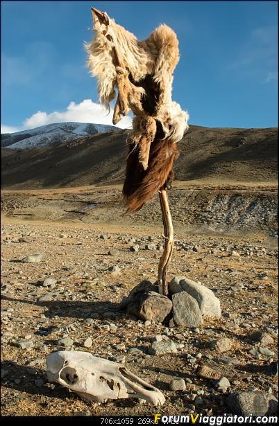 Nomadi e steppe, aquile e montagne: un viaggio in Mongolia-dsc_4379.jpg