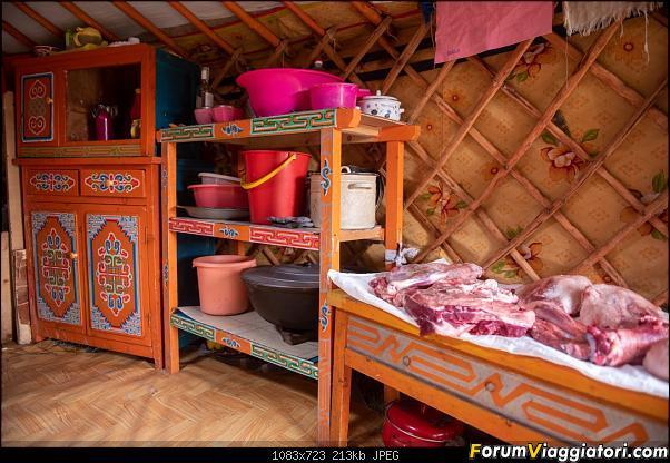 Nomadi e steppe, aquile e montagne: un viaggio in Mongolia-dsc_4437.jpg