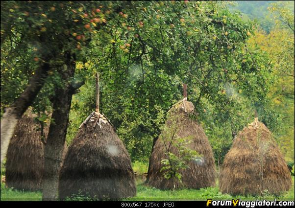 Bosnia-Erzegovina 2018, un'altra piacevole scoperta-46img_3504.jpg