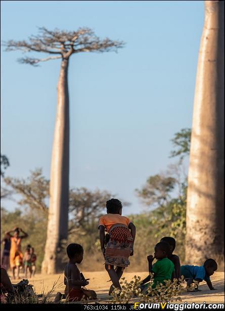 Sunti malgasci-dsc_5569.jpg