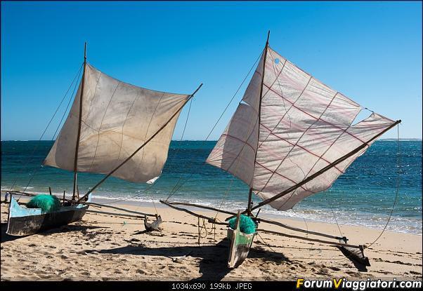 Sunti malgasci-dsc_0621.jpg