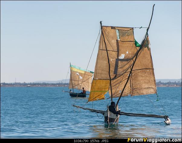 Sunti malgasci-dsc_5032.jpg