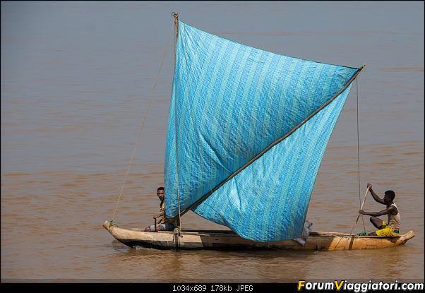Sunti malgasci-dsc_5949.jpg