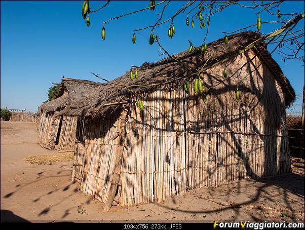 Sunti malgasci-dsc_0759.jpg