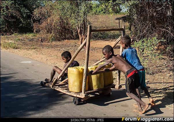 Sunti malgasci-dsc_1413.jpg
