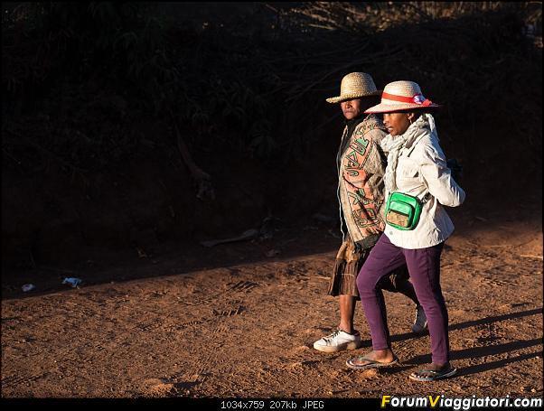 Sunti malgasci-dsc_5349.jpg