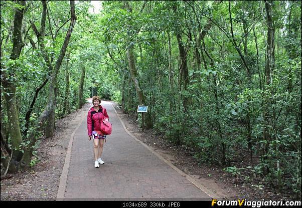 Da Buenos Aires e Iguazu alla Terra del Fuoco,sconfinando nella patagonia Cilena-051.jpg