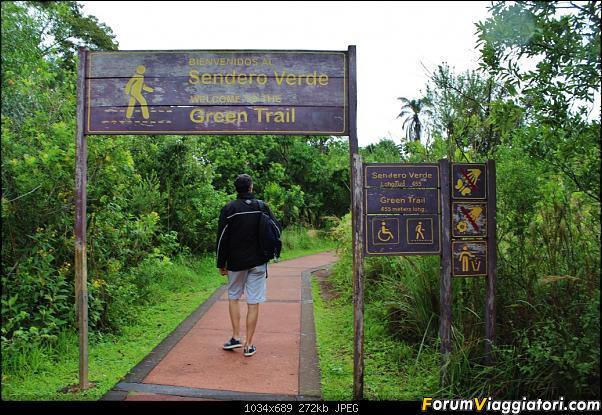 Da Buenos Aires e Iguazu alla Terra del Fuoco,sconfinando nella patagonia Cilena-047-sendero-verde.jpg