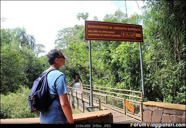 Da Buenos Aires e Iguazu alla Terra del Fuoco,sconfinando nella patagonia Cilena-063-circuito-superior.jpg