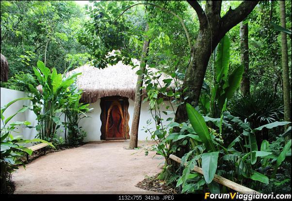 Da Buenos Aires e Iguazu alla Terra del Fuoco,sconfinando nella patagonia Cilena-024-toilette-tropicale.jpg
