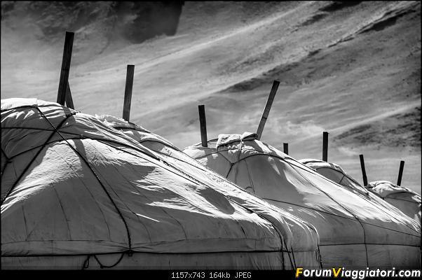 Nomadi e steppe, aquile e montagne: un viaggio in Mongolia-_dsc4153_bn.jpg