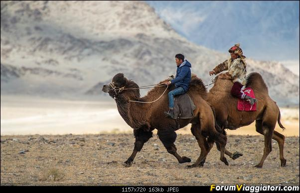 Nomadi e steppe, aquile e montagne: un viaggio in Mongolia-_dsc4272.jpg