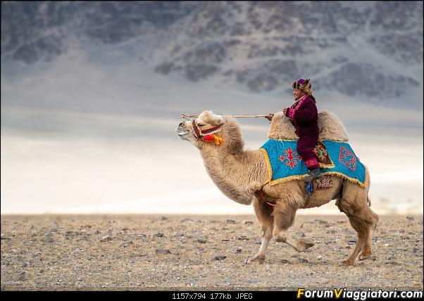 Nomadi e steppe, aquile e montagne: un viaggio in Mongolia-_dsc4279.jpg