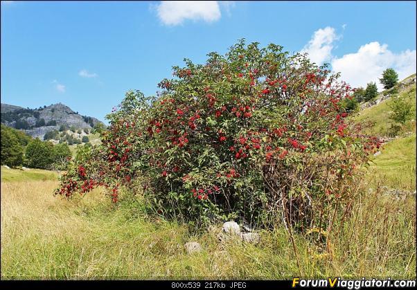 Bosnia-Erzegovina 2018, un'altra piacevole scoperta-57img3658.jpg