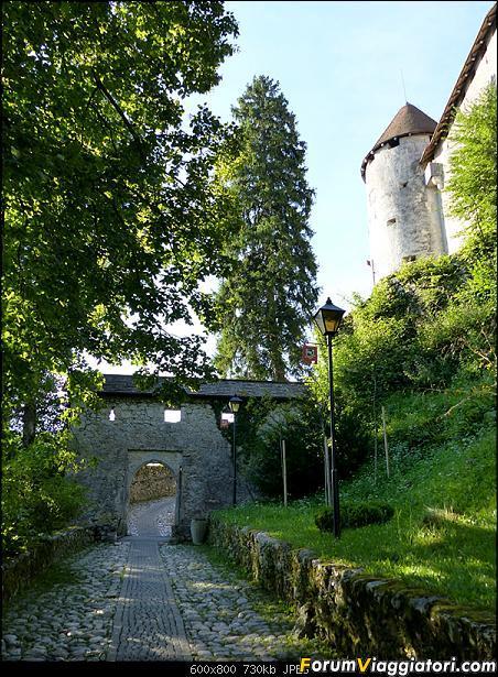 Slovenia, polmone verde d'Europa-p1800565.jpg