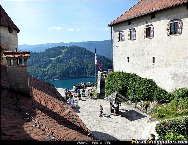 Slovenia, polmone verde d'Europa-p1800694.jpg